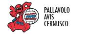 Pallavolo Avis Cernusco