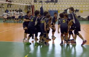 U12M_20170305_ARGENTIA_AVIS_03